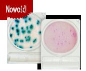 Szybkie testy bakteriologiczne CompactDry